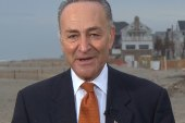 Schumer: 'A year from now this will all be...