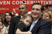'Burning the village down': Is Ted Cruz's...