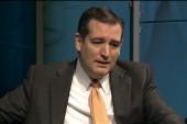 Cruz, McCain sound off on gov't. shutdown