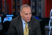Schumer hopes GOP 'will come to their senses'