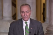 Schumer: Boehner, McConnell did right thing