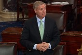 Steele: Sens. Graham, McCain were ...