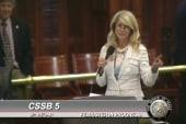 Texas State Sen. Davis filibusters strict...