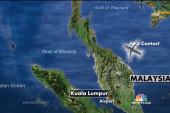 Is it possible missing flight 370 landed?