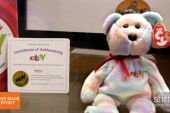 What happened to the great Beanie Baby craze?