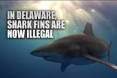 The most interesting new laws in 2014
