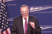 Schumer: Dems to blame for Tea Party's rise