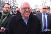 Bernie strolls through Concord, NH