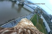 Eagle captures incredible video of London