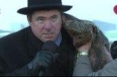 Grumpy groundhog bites mayor's ear