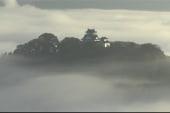 Japan's 'castle in the sky' dazzles onlookers