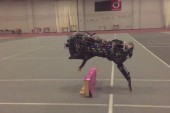 MIT's robot totally nails running jumps