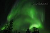 Solar storm triggers a spectacular light show