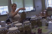 Cannabis tourism adds to growing pot industry