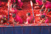 70th annual 'La Tomatina' festival hits Spain