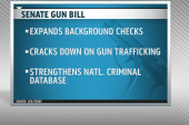 New gun legislation to be introduced in...