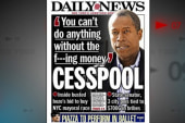 NY Democratic state senator allegedly paid...