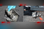 Parts of devices still intact found in...