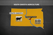 Agriculture drives South Dakota economy