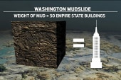 Disaster area 'massive' in Washington