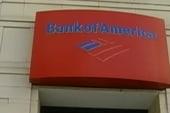 'The adventures of Banksie, my pet bank!'