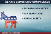 Senate gun control package revealed