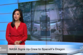 SpaceX launch given green light