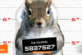 Squirrel makes Michigan's 'Most wanted'