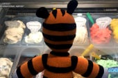Stuffed toy goes on a one-of-a-kind adventure