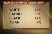 Texas demographics versus voter turnout