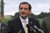 Ted Cruz touts anti-everything approach