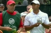 Tiger's ex-caddie: Lost respect for golfer