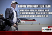 GOP responds to Trump's immigration policy