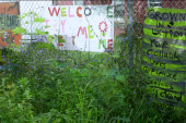 Detroit's gardens give the city's empty...