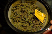 Meet the 'Pot Barons of Colorado'