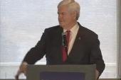 Newt Gingrich on personhood versus...