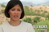 Alex Wagner on economic security