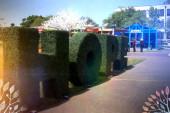 Growing Hope at Sweet Auburn Springfest