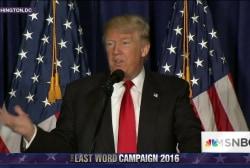 Expert: Trump policy speech was 'word salad'