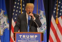 Trump: Being presidential is easy