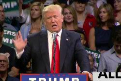 How to rebuke Donald Trump's lies?