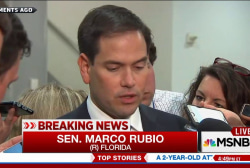 Marco Rubio considers running for reelection