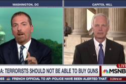 Sen. Johnson on why gun control is difficult