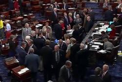 Senate votes down terror watch list proposals
