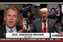 Sen. Sherrod Brown takes on Trump