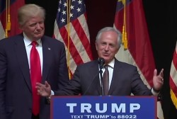 Two Senators Bow Out of Trump VP Search