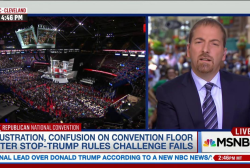 Raucous dissent takes over RNC floor