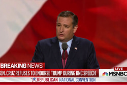Ted Cruz snubs Donald Trump at RNC