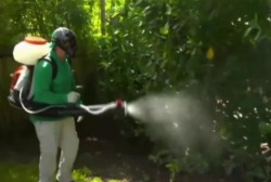 Surgeon General comments on Zika efforts