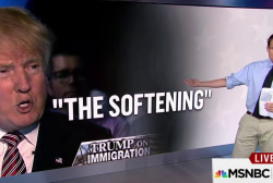 Breaking down Trump's 'softening' on...